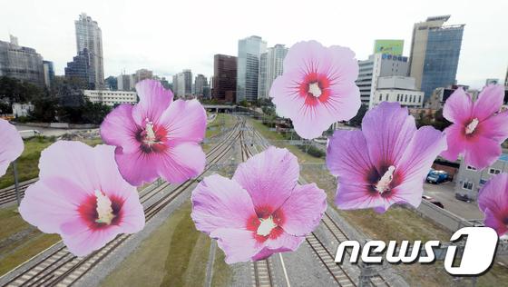 서울로 7017 물들인 무궁화