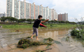 부유물과 쓰레기 쌓인 돌다리 치우는 시민