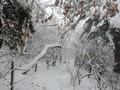 올 겨울 첫눈 내린 설악산