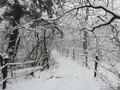 겨울왕국이 된 설악산 풍경