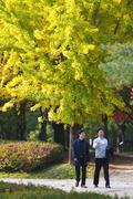 가을 산책 즐기는 시민들
