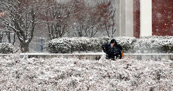 '눈 없는 겨울' 청주 올겨울 강수량 28㎜…이달 0.