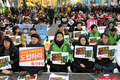 선거제도 개혁을 위한 여의도 불꽃집회