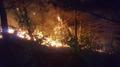양양 산불…강한 바람에 진화 난항