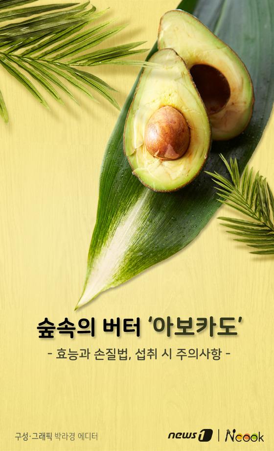 [카드뉴스][건강N쿡] 숲속의 버터 '아보카도' 효능과 손질법, 섭취 시 주의사항