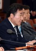 임시국무회의 모두발언하는 이낙연 총리
