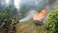 전주 중인동 야산에 화재 발생