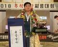김기수, 2018 추석장사씨름대회 금강장사