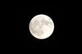'한가위 보름달에 소원 비세요'
