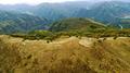 황금빛 물결로 뒤덮힌 민둥산