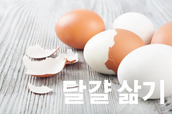 달걀 삶는 데에도 골든타임이 있다?
