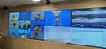제주 차귀도 대성호 화재 침몰 사고 관련 관계부처 화상회의