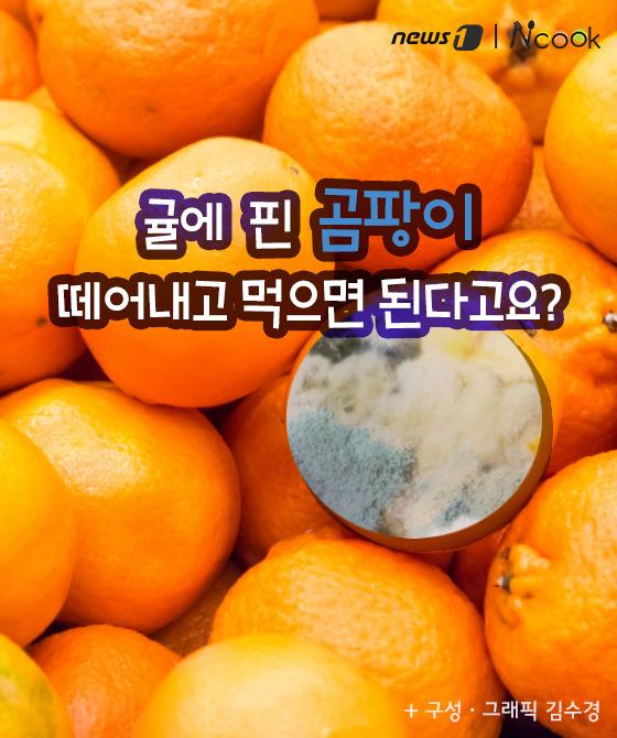 [카드뉴스] 귤에 핀 곰팡이 떼어내고 먹으면 된다고요?