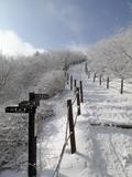 겨울왕국으로 올라가는 길