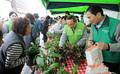 시민들에게 나무 나눠주는 임정배 대상 청정원 대표이사