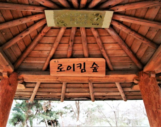 """[공식입장] 로이킴 숲 명패 철거…강남구청 """"민원 많았다"""""""