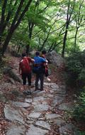 도봉산119산악구조대, 하산중 다리 부상 70대 남성 구조