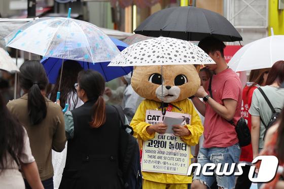 \'우산은 머리에 얹고\'