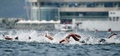 여자 오픈워터 수영 5㎞...'순위 다툼'