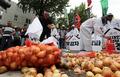 '청와대 앞에 양파 놓는 성난 농심'