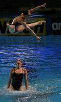'화려한 점프'