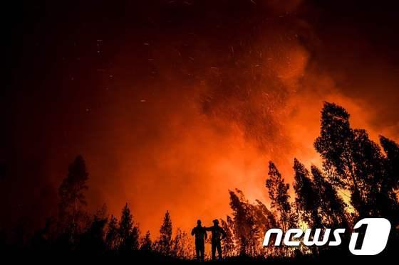 [사진] 무서운 기세로 확산되는 포르투갈 산불