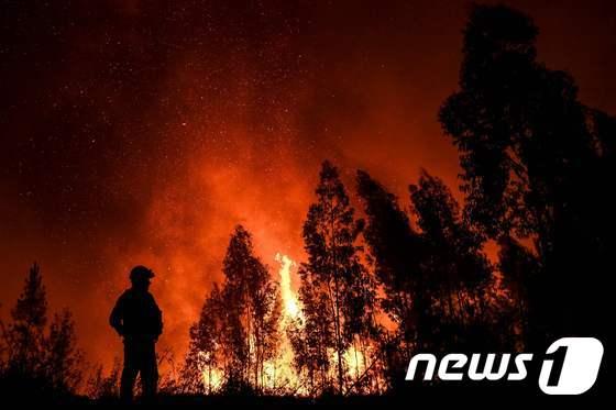 [사진] 포르투갈 산불로 20여명 부상당해