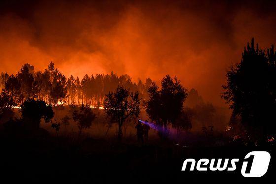 [사진] 온산을 불태우는 포르투갈 산불의 기세