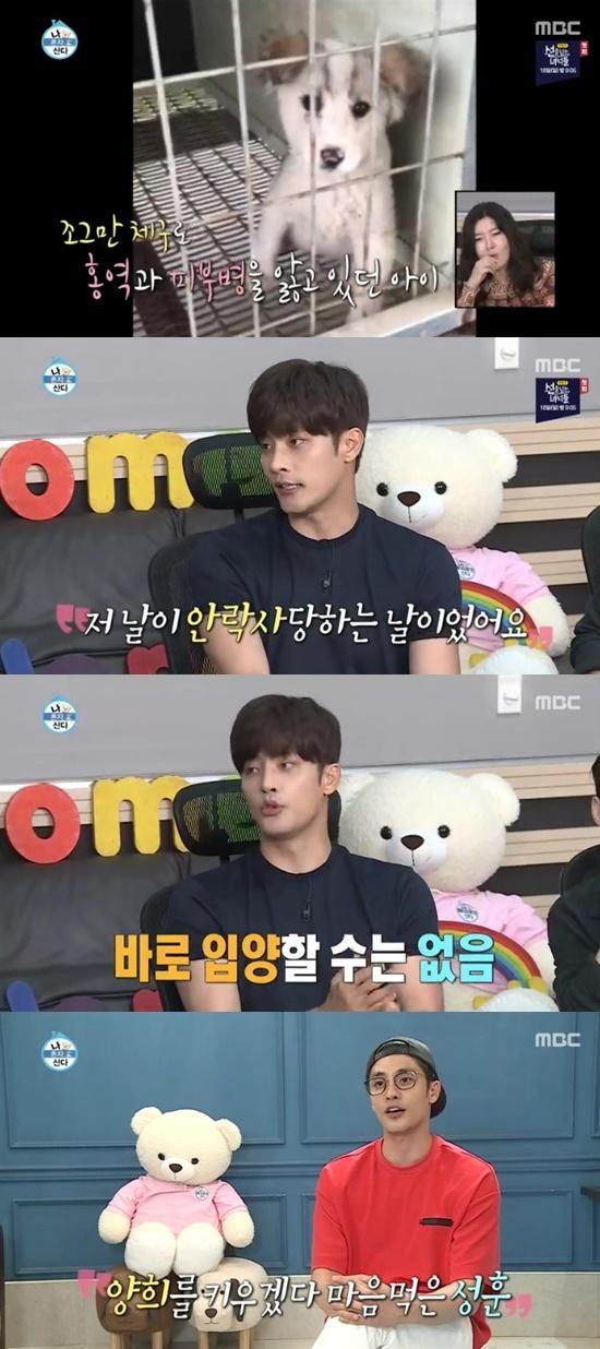 '나혼자산다' 성훈, 유기견 '양희' 안락사 날 임시보호→입양까지