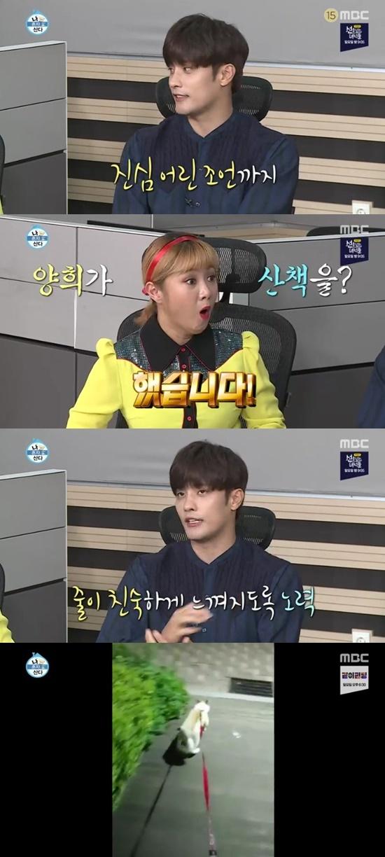 '나혼자산다' 성훈, 반려견 '양희' 산책 성공…줄 공