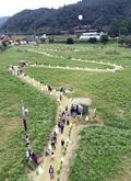 평창효석문화제 즐기는 관광객들