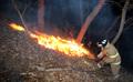 불길 이어지는 계룡산 산불