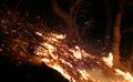 거세지는 산불