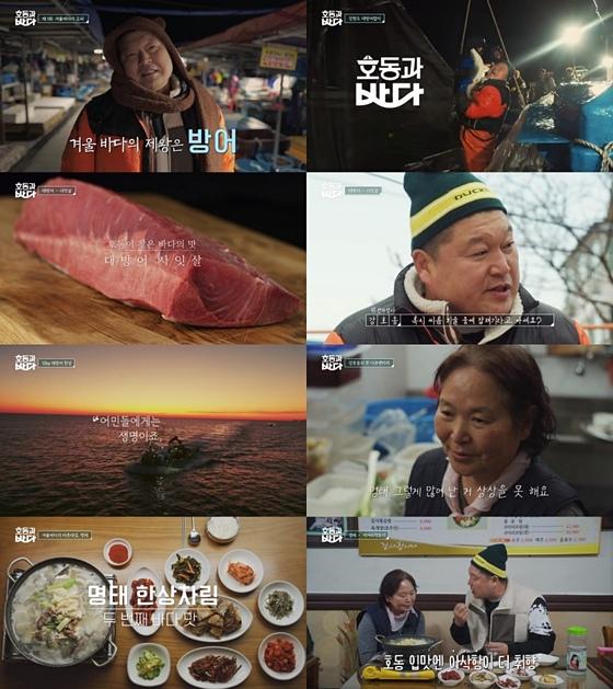 '호동과 바다' 강호동, 하루벌이 6000만원 방어잡이 도전