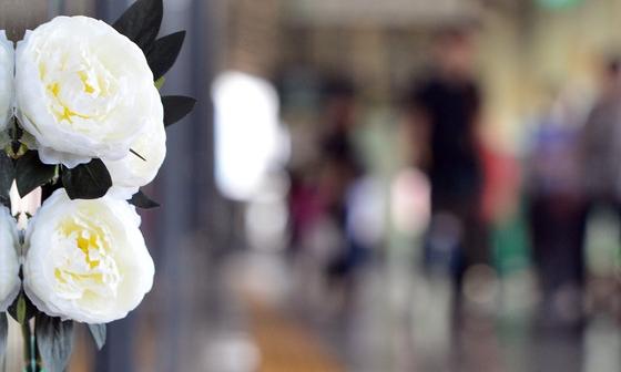 스크린도어에 놓여진 국화꽃