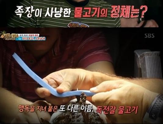 '정글의 법칙' 김병만, 맹독 스톤피쉬 사냥 '일명 독전갈 물고기'