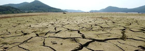 가뭄에 쩍쩍 갈라진 바닥…저수지 맞아?