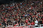 U-20월드컵과 여자월드컵 그리고 A매치… '붉은 한 달'이 온다