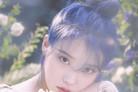 [N초점] 아이유의 힘…솔로→성시경·정승환도 성공적