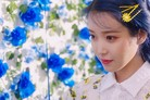 """""""아이유는 아이유다"""" '러브 포엠' 차트 폭격…전곡 줄세우기"""