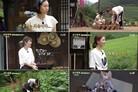 [N초점] 예능 신작 점검…'삼시세끼', 동분서주 3인방의 활력 힐링