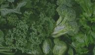 [카드뉴스][건강N쿡] 시금치·부추·브로콜리⋯녹색 채소가 좋은 이유