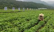 순창, 올  논 타작물 재배 261㏊, 8억6000만원 예산확보