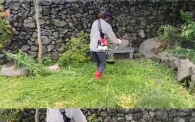 """[N샷] 이효리, 예초기로 풀베기도 능수능란…""""서울과 제주의 차이"""""""