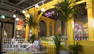 한예슬 브이로그에 등장한 티라미수 맛집은 어디?