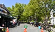 담양 명소 '국수의 거리' 10월까지 차 없는 거리로