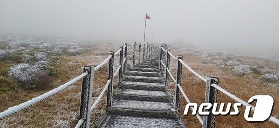 얼음꽃 핀 제주 한라산…상고대 '장관'