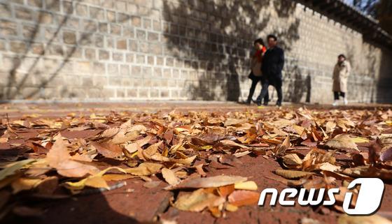 낙엽... 겨울이 온다