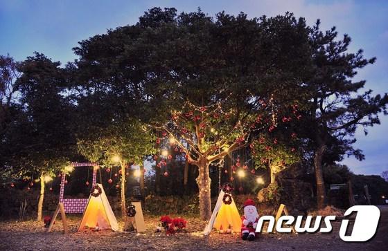 제주현대미술관, 곶자왈 속에 펼쳐진 밤의 겨울왕국