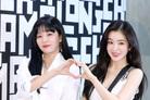 """레드벨벳 유닛 아이린&슬기, 7월로 앨범 발매 연기 """"완성도 위해"""""""